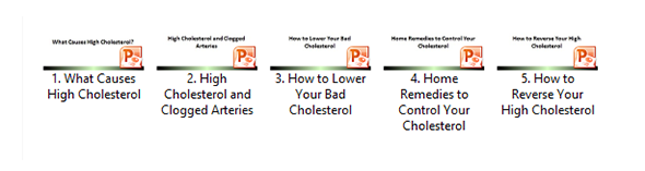 High Cholesterol Slide Decks